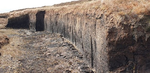 Peat Bank on Lewis